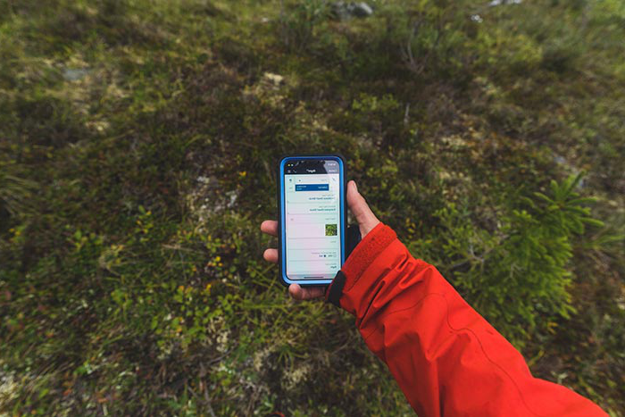 Students recorded 3,000 vegetation data points on their iPhones, to compare later against NASA satellite imagery